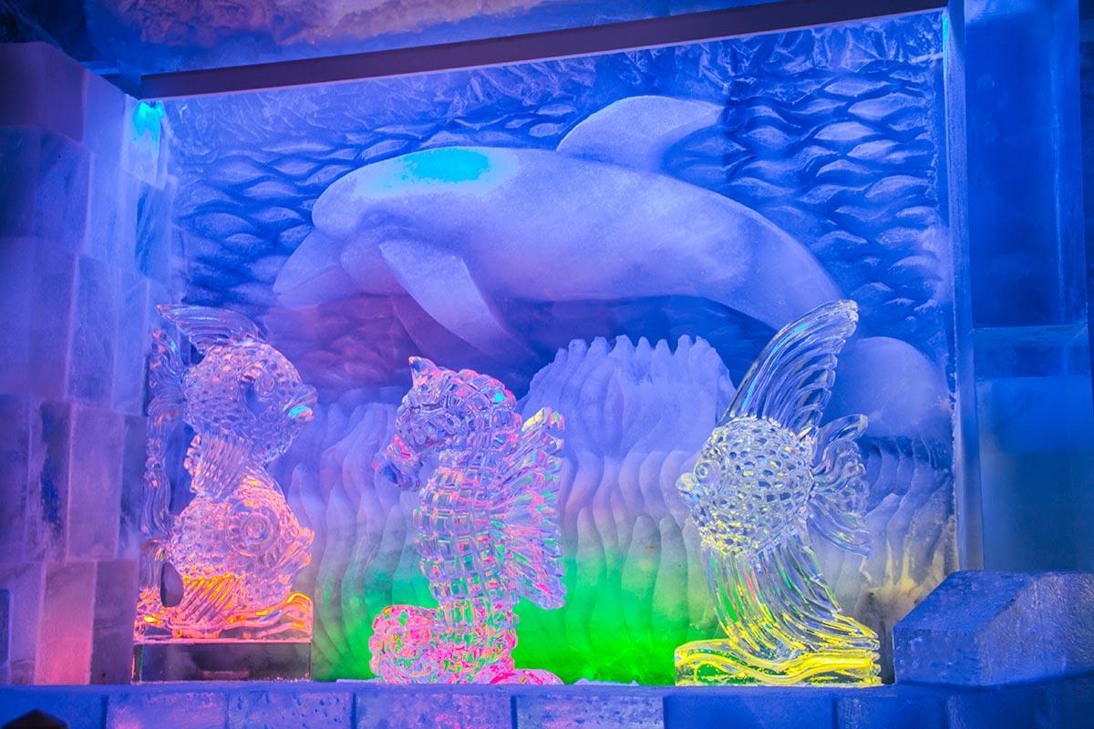Aquarium a Eis Pavillon